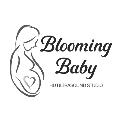 pregnancy resources fargo