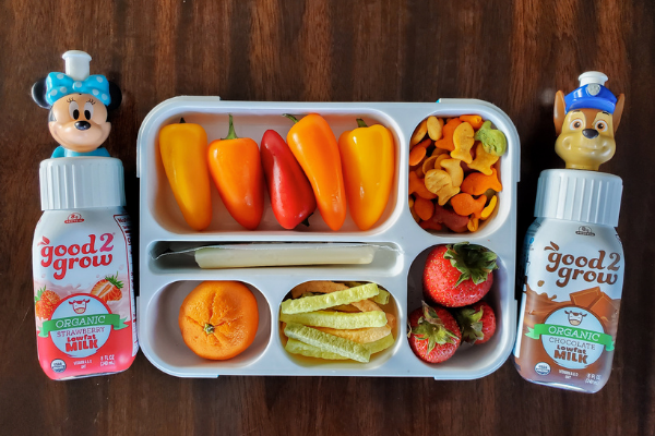 Fun & Healthy Summer Snacks for Kids On the Go!